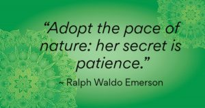 """Adopt the pace of nature: her secret is patience."" ~ Ralph Waldo Emerson"