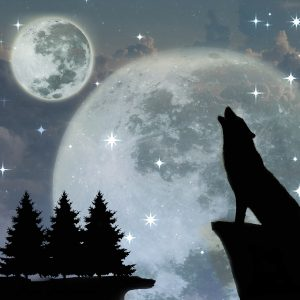 wolf howling at the moon (in silhouette)