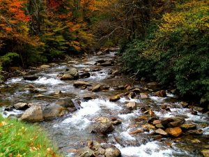 brook with many rocks and fall foliage