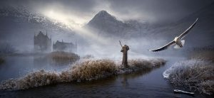 A foggy river bank with mountains in background and a falcon in the air