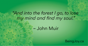 """And into the forest I go, to lose my mind and find my soul."""" ~ John Muir"""