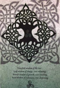 intricate celtic lace design