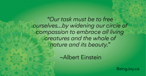 """green mandale and the quote - """"Our task must be to free ourselves…by widening our circle of compassion to embrace all living creatures and the whole of nature and its beauty."""" ~Albert Einstein"""
