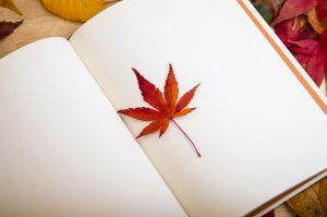 an empty open notebook with a maple leaf as a book mark